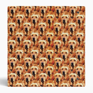 Cool Dog Art Doggie Golden Retriever Abstract 3 Ring Binders