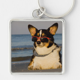 Cool Dog at the Beach Silver-Colored Square Keychain