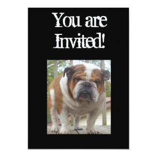 Cool English Bulldog Invitation Birthday or Any Oc