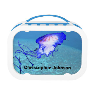 Cool Fun Cute Unique Ocean Reefs Jellyfish Custom Lunch Box
