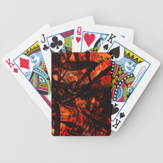 COOL GRAFFITTI FIVE BICYCLE PLAYING CARDS
