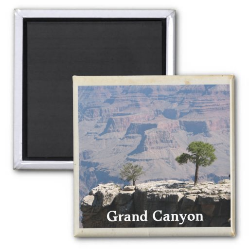 Cool Grand Canyon Magnet!