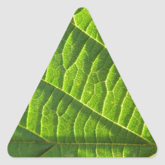 Cool green leafprint triangle stickers