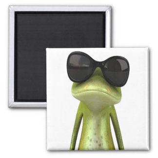 COOL IN SHADES MAGNET