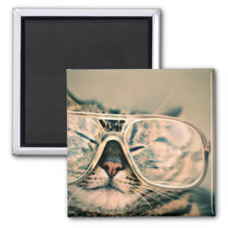 Cool Kitty in Oversized Glasses Magnet
