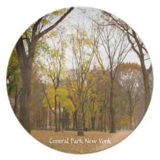 Cool New York Plate Souvenirs Central Park Plate
