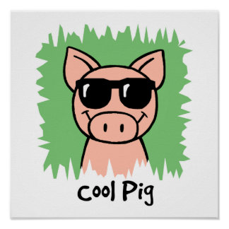 Cool Pig Poster