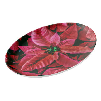 Cool Poinsettia Picture Design Porcelain Serving Platter
