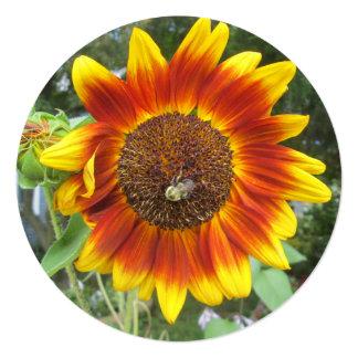 "Cool Sunflower Plant 5.25"" Square Invitation Card"