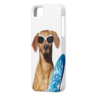 Cool surfer dog, Rhodesian Ridgeback in sunglasses iPhone 5 Cover