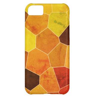 Cool Unique Rustic Pattern iPhone 5C Case