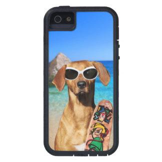Cool vacation surfer dog, Rhodesian Ridgeback iPhone 5 Covers