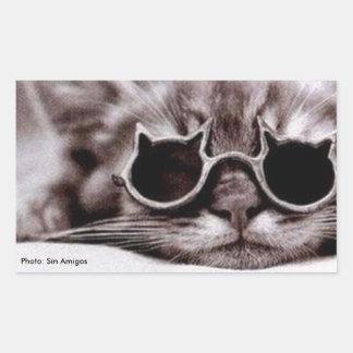 Coolest Cat alive - Rectangular Sticker