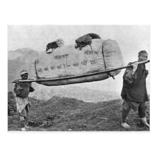 Coolies carrying cotton, 1901 (b/w photo) postcard