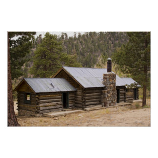 Coon Creek Cabin Poster