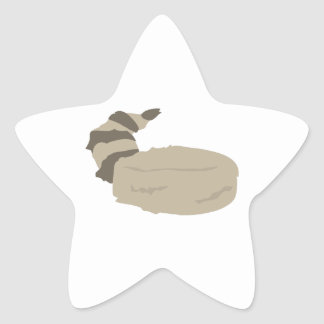 Coon Skin Cap Star Sticker