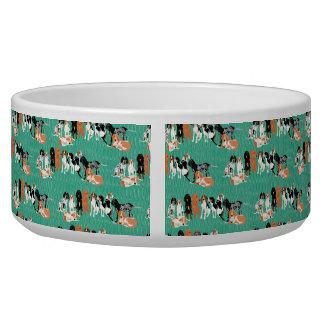Coonhound Row Pet Bowl