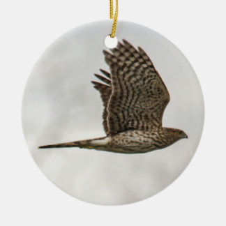 Cooper's Hawk Ceramic Ornament