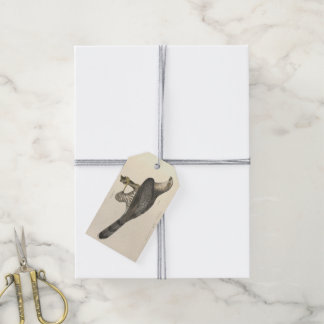 Cooper's Hawk Gift Tags