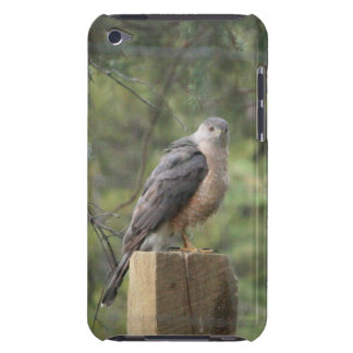 Cooper's Hawk iPod Touch Barely There Case