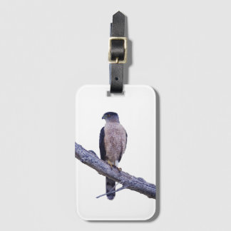 Cooper's Hawk luggage tag