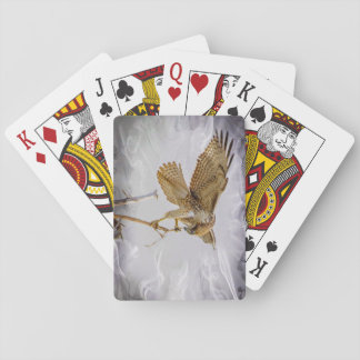 Coopers Hawk Poker Deck