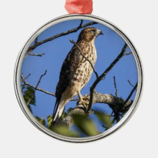 Cooper's Hawk Silver-Colored Round Ornament