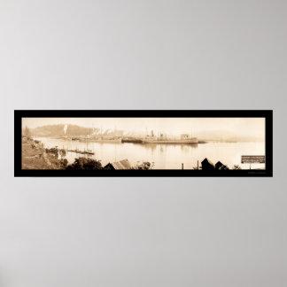 Coos Bay Steamships Photo 1915 Poster
