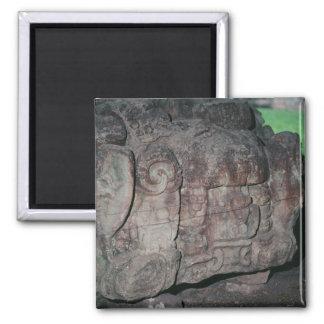 Copan Honduras Mayan Ruins Color Photo Designed Magnet