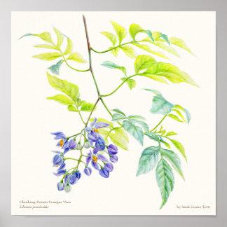 Copie botanique d'affiche de beaux-arts de