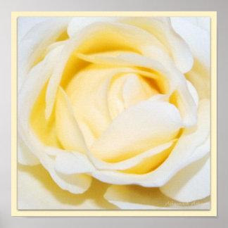 Copie florale de photographie de beaux-arts de ros poster