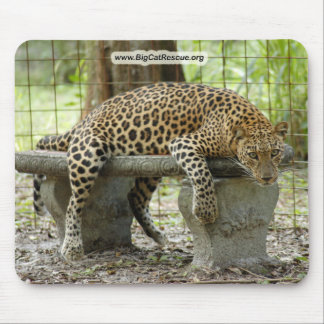 Copie LeopardSundari_011 Tapis De Souris