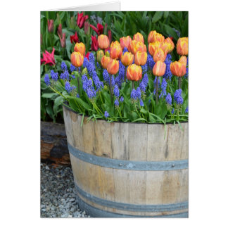 Copie orange de planteur de tulipe de ressort carte de vœux
