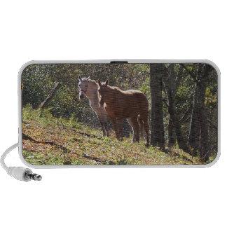 Copie populaire de chevaux sur des haut-parleurs