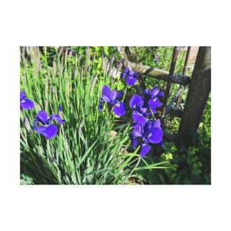 Copie pourpre de toile d'iris impressions sur toile
