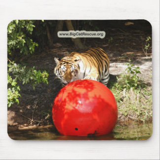 Copie Tiger_Aroara030 Tapis De Souris