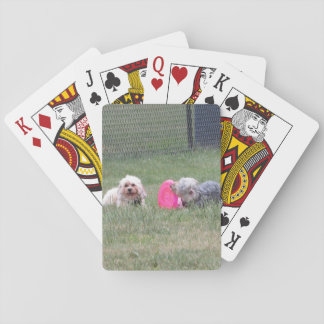 Copper and Penny Playing Cards
