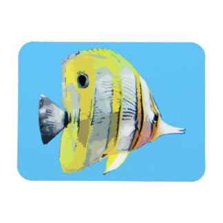 Copper-banded Butterfly Fish Vinyl Magnet