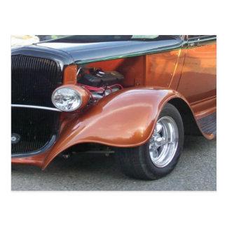 Copper Beauty Postcard