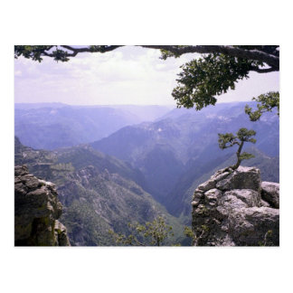 Copper Canyon Postcard