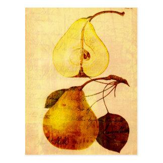 Copper Pear Postcard