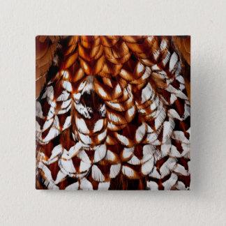 Copper Pheasant Feather Design 2 Inch Square Button