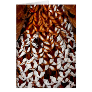 Copper Pheasant Feather Design Card