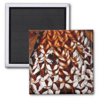 Copper Pheasant Feather Design Magnet