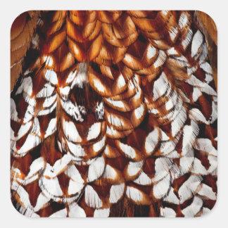 Copper Pheasant Feather Design Square Sticker
