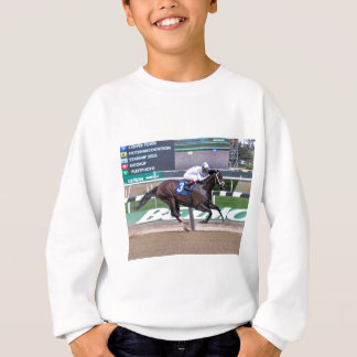Copper Town Sweatshirt