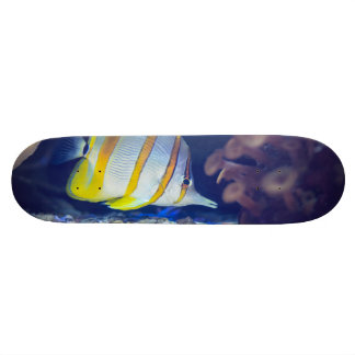 Copperband Butterflyfish Skate Board Deck