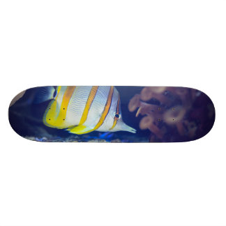 Copperband Butterflyfish Skateboard