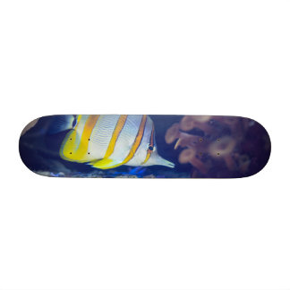 Copperband Butterflyfish Custom Skate Board