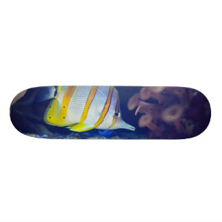 Copperband Butterflyfish Skate Deck